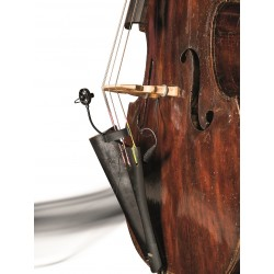 CL21 LANEN CELLO